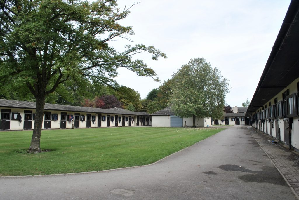 racehorse training stables