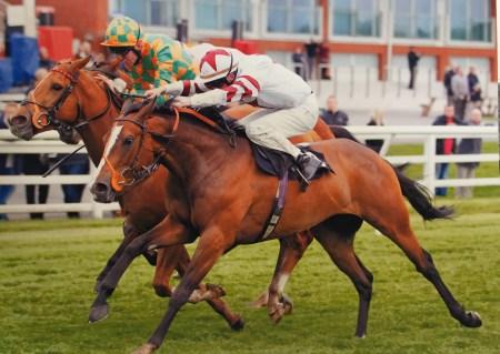 racehorse winning john jenkins