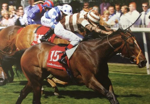 little white lie racehorse newmarket winner bunbury cup john jenkins