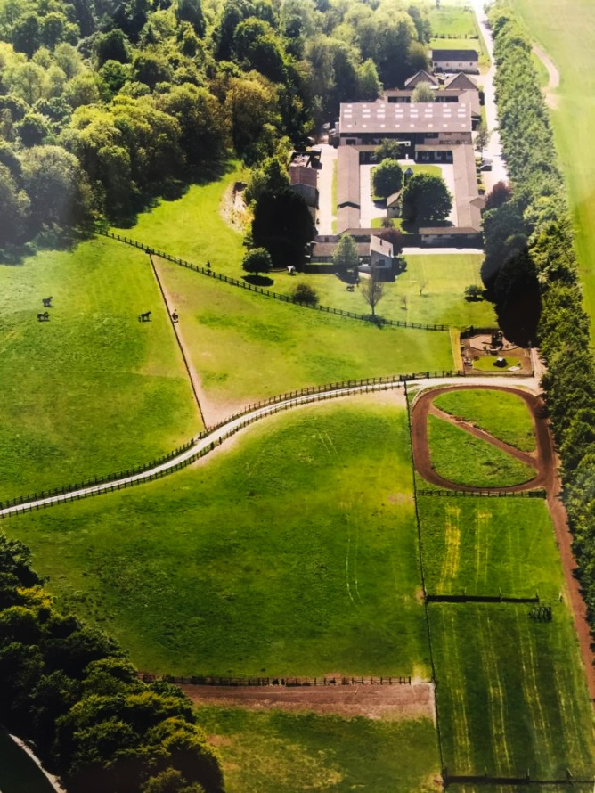 King ride gallops therfield aerial view racing stables John Jenkins