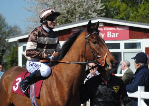 racehorse colours training racecourse racing horse